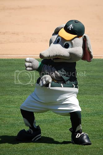 stomper the mascot